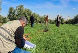 ريف حمص.. مشاريع إنتاجية توفر عشرات فرص العمل
