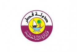 MOI announced the required documents for leaving during amnesty